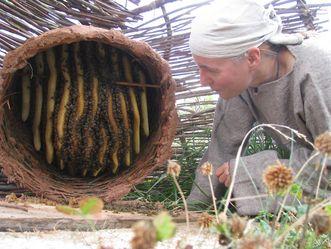 Heuneburg, Imkerei zur Keltenzeit, Bienenstock